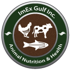 ImEx Gulf Inc.